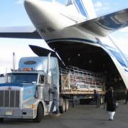 carga avion 1